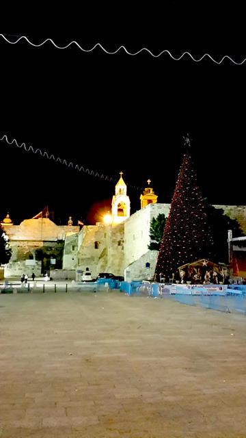 Площадь Рождества Христова в Вифлееме, украшенная Рождественской ёлкой