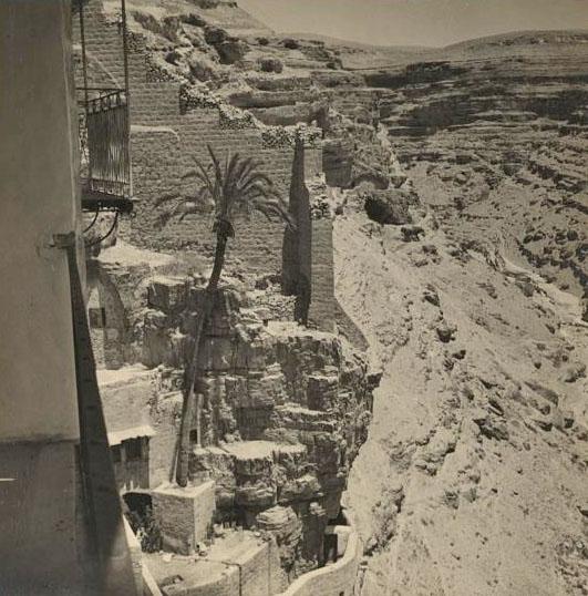 Чудотворная пальма в Лавре преп. Саввы. 1 августа 1937 г. Фото Вильсона. Библиотека конгресса США